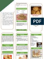 Triptico-galletas de Avena