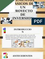 ELEMENTOS-BASICOS-DE-UN-PROYECTO-DE-INVERSION-GRUPO-4.pptx