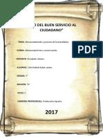PROCESO DE PLANTA DE MANDARINA.docx