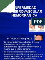 acv hemorragico 4