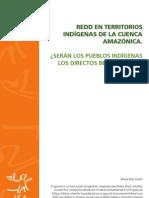 Redd en Territorios Indígenas de la Cuenca Amazónica.