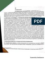 resumaçodireitosfundamentais.pdf