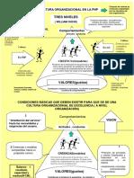 Cultura Organizacional de La PNP