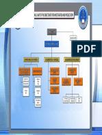 DIP - Organizational Structure