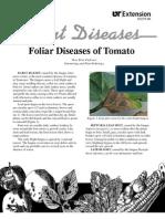 Foliar Diseases of Tomato