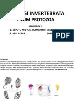Kelompok 1 Protozoa
