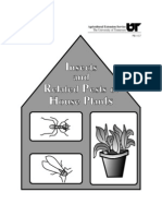 Insects and Related Pests of House Plants