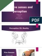 The five senses and perception.pptx