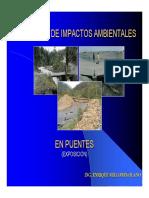 Evaluacion_de_impactos_Ambientales Millones Olano.pdf