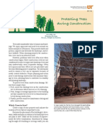 Protecting Trees During Construction