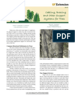 Cabling, Bracing and Other Support Systems for Trees