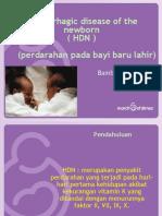 dr Bambang_H D N2010.ppt
