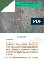 Tema 1 Carmex
