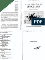 318690693-JAMES-a-HALL-A-Experiencia-Junguiana.pdf