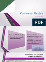 Curriculum Flexible