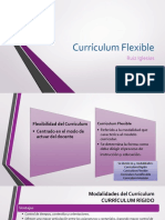Curriculum Flexible