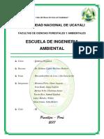 Los Biocombustibles 1er y 2da Generación - Ing. Ambiental Unu 2017