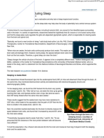 Brain Clear Toxins During Sleep
