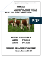 Plan Negocio Rural Final