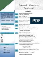 Curriculum Vitae Naturopata Español 2017 (1)
