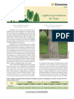 Lightning Protection for Trees