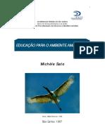 tese_doutorado_michele_sato.pdf