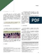 2Epitel.pdf
