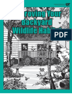 Improving Your Backyard Wildlife Habitat