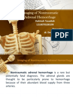 ppt Radiologi
