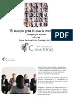 Siner Propuesta Formativa Chile