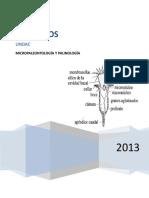 5-informe final de micropaleontologia.doc