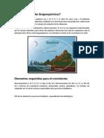 Qué Son Los Ciclos Biogeoquímicos