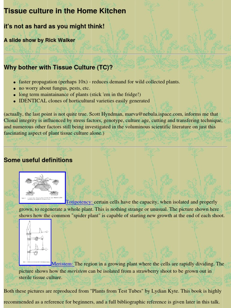 Tissue Culture in the Home Kitchen   Pressure Cooking   Hydrogen ...