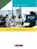 Nuevocurriculonacionaldelaeducacionbasica Nivelinicial2017 160603194545 2