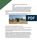 CONJUNTO ARQUEOLÓGICO DE CABEZA DE VACA.docx