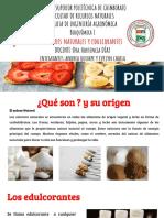 EDULCORANTES Y AZUCARES NATURALES.pptx