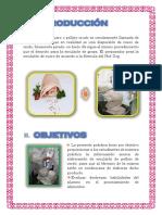 LUZ- EMULSION DE PELLEJO.docx