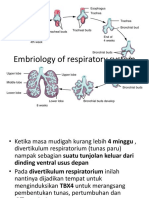 IDK 1 Embriology of respiratory system.pptx