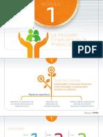 Desarrollo Conceptual Inclusión Financiera
