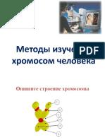 Методы анализа хромосом-2017.ppt