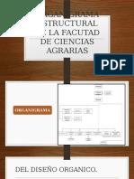 ORGANIGRAMA ESTRUCTURAL DE LA FACUTAD DE CIENCIAS AGRARIAS.pptx