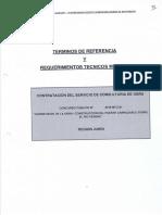 TDR_RTM_Superv Pte. Perene y accesos.pdf