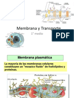 Membrana y Transporte.ppt