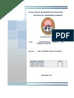 Proyecto Cemento Con Cenizas Volantes (2)