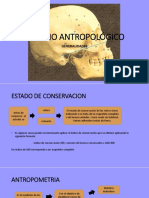 ESTUDIO ANTROPOLÓGICO