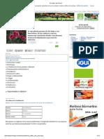 El-cultivo-del-Clavel.pdf