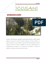 socosani.docx