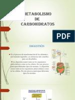 Metabolismo de los carbohidratos diapositivas Bioquímica I