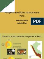 Hongos y Medicina Natural en El Perú