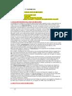 1º Cuatrimestres Apuntes Derecho Mercantil